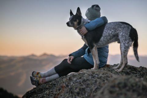 Hiker with their dog a top a mountain